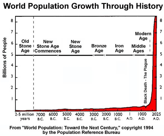 Image result for human population graph image