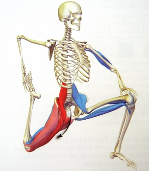 Low back every morning pain and deep muscle psoas etc low back every morning pain and deep muscle psoas etc stretches ccuart Image collections